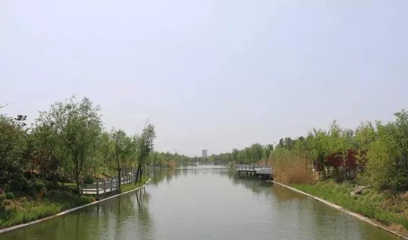 河道堤岸绿化图片