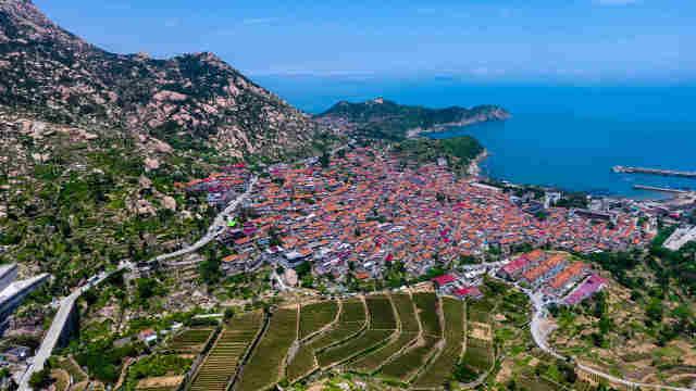 这是无人机航拍的青岛市崂山区王哥庄街道雕龙嘴村茶园和村落.