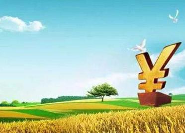 潍坊市耕地地力保护补贴6.4亿元已下达