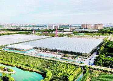 潍坊农综区聚力成势 向世界递农业开放发展金字名片