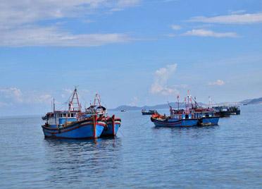潍坊市海洋发展和渔业局关于限期缴纳海域使用金的通告