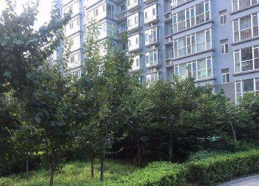 潍坊康桥水岸小区业委会被质疑对使用维修资金监管不力,业主联名要求罢免