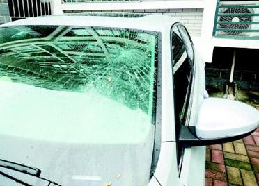 谁高空扔桃砸坏我的车?潍坊警方正调查,或检测DNA