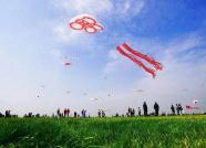 第三十七届潍坊国际风筝会道路交通管制通告