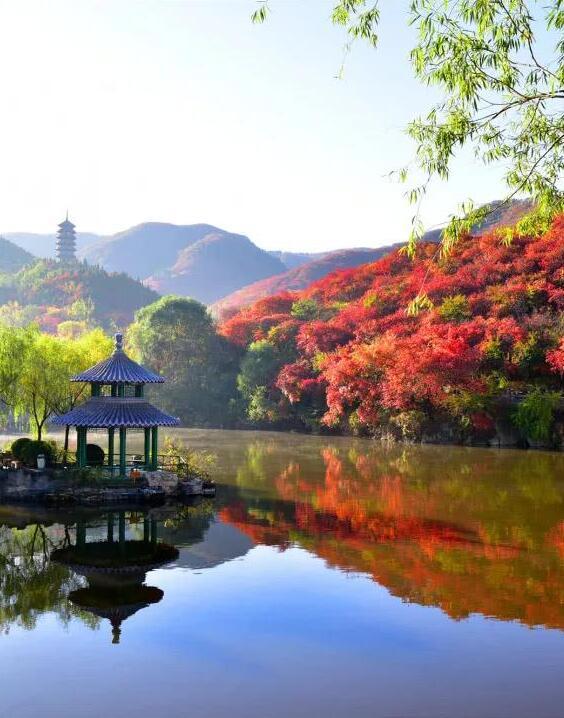 如诗如画!济南红叶谷迎来最佳观赏季