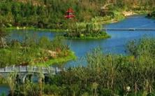 潍坊:打造良好生态环境,助力高质量发展!