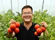 """精准种养  潍坊""""新农人""""把农场开成了公司"""