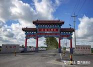 一年销售优质梨枣2.5万吨,潍坊一村庄成全国最大梨枣生产基地