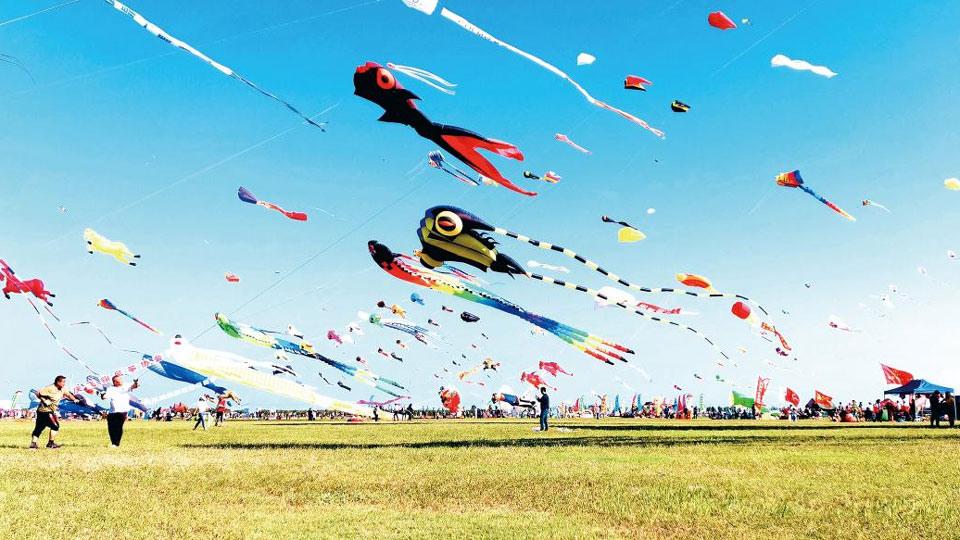 上天!第17届世界风筝锦标赛暨万人放飞活动