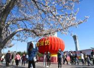 周五周六晚,潍坊人民广场有演出!