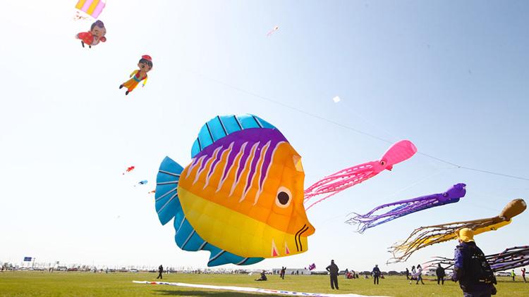 春风十里飞彩鸢丨第17届世界风筝锦标赛暨万人风筝放飞活动侧记