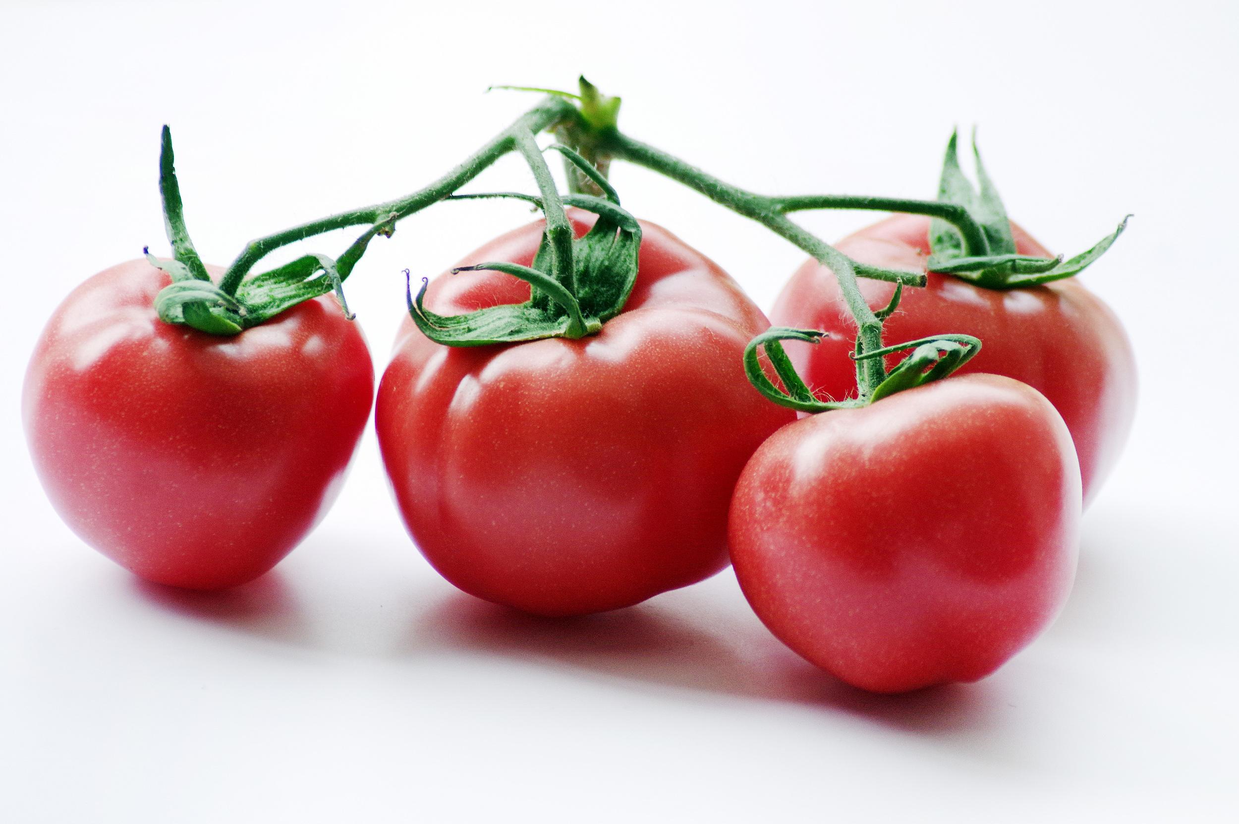 最受喜爱十大番茄!寿光贡献七个品种