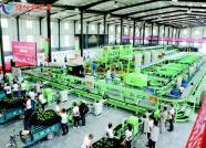 从郭牌西瓜的崛起看潍坊寒亭城郊农业产业振兴