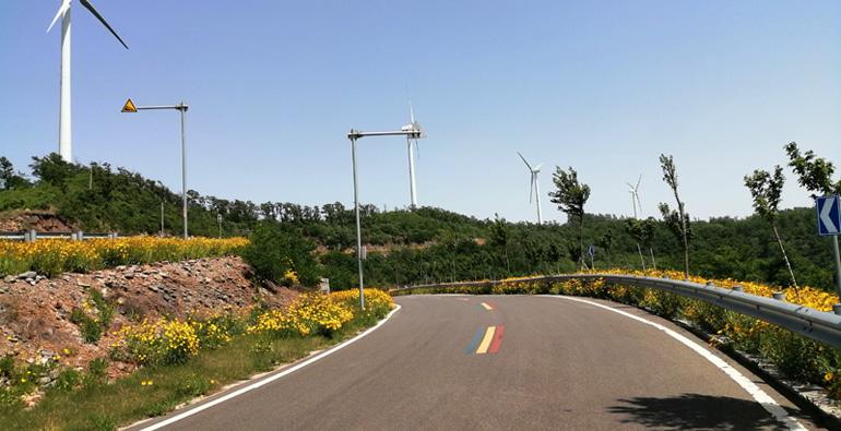潍坊安丘:蜿蜒天路繁花开 诗意公路醉游人
