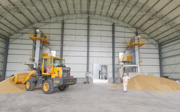 滨州全力做好小麦产后和收储环节服务保障工作