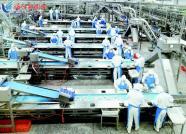 潍坊诸城:加快农业转型升级 推动乡村全面振兴