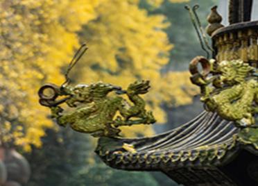 潍坊市非遗保护协会传统医药专业委员会成立