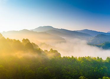 潍坊上半年盘活批而未供土地和闲置土地2440.8公顷