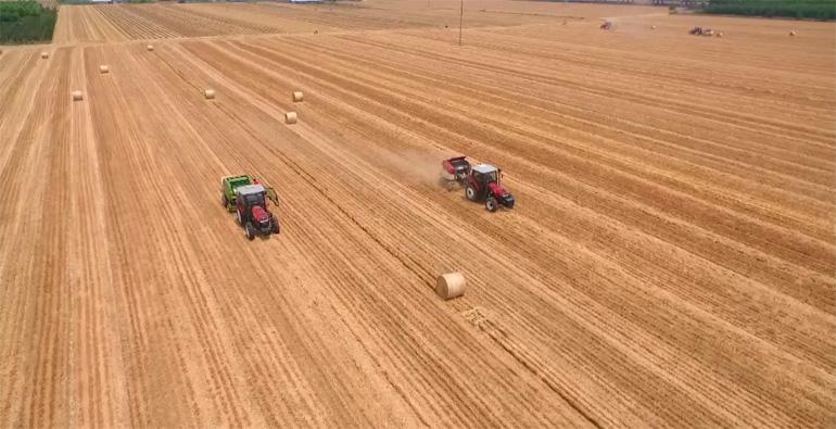 既能当肥料、又能做餐具,潍坊农田秸秆综合利用率突破93%