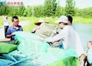 潍坊峡山区:增殖放流保护生态