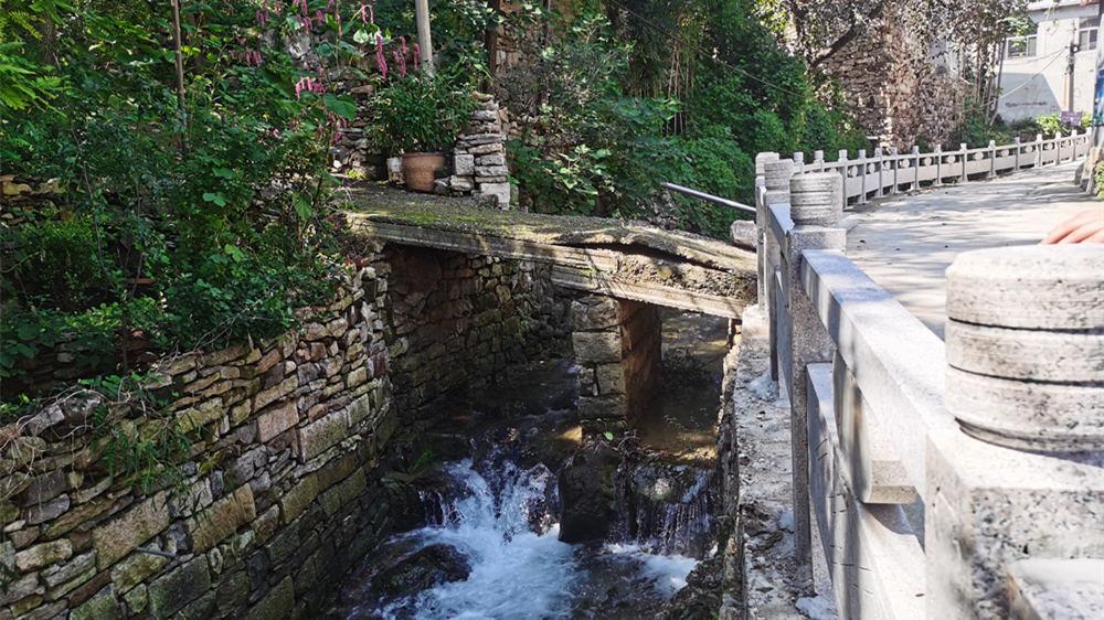 寻源!小桥流水 ,汩汩涌泉,记者带您寻访济南泉水源头