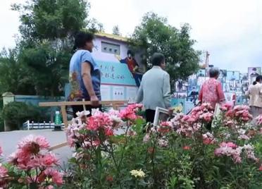 潍坊通过产业集群、产业强镇等模式推进乡村产业振兴