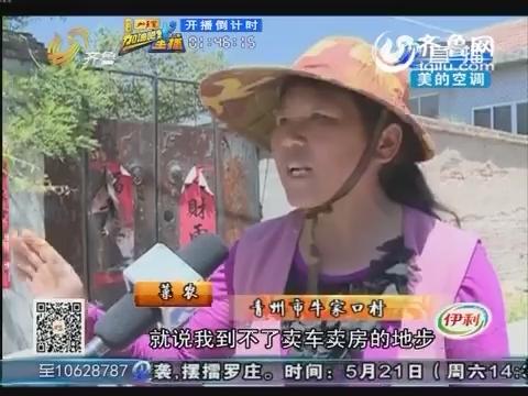 潍坊:西葫芦上市 遭到疯抢