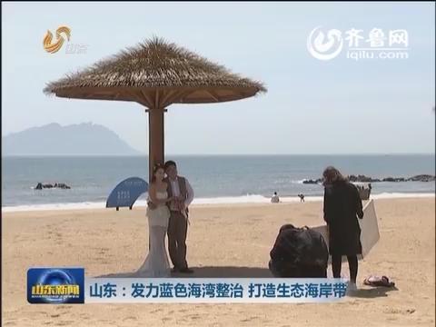 山东:发力蓝色海湾整治 打造生态海岸带