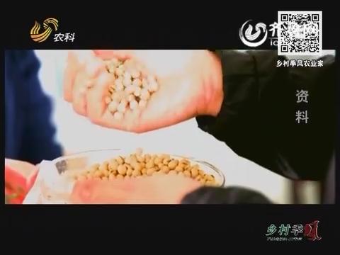 大豆产业新契机 品种技术都是坎
