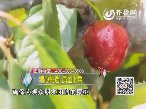 20160521《妈咪GO》:临朐优质美早大樱桃