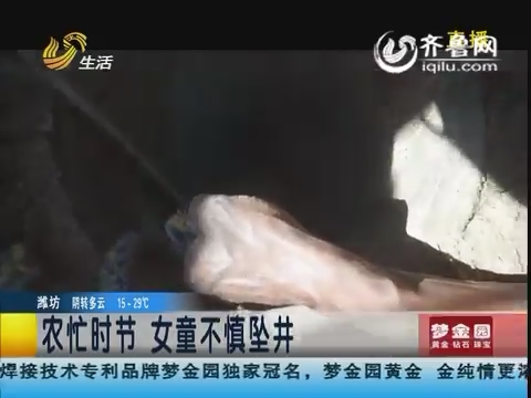 济宁:农忙时节 女童不慎坠井