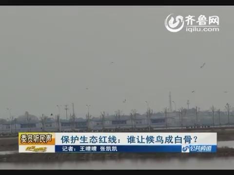 【委员听民声】保护生态红线:谁让候鸟成白骨