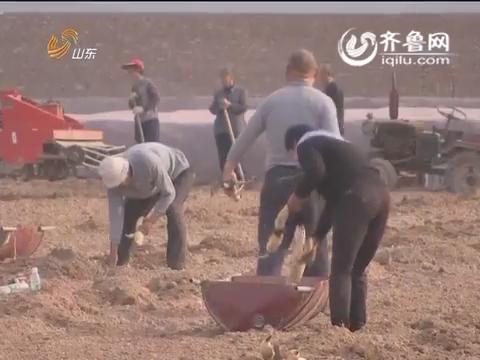 20160528《齐鲁先锋》:党建视线·扎实推进基层党建 齐河县让基层支部强起来(上)