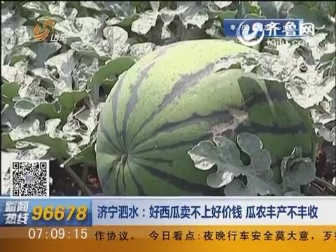 济宁泗水:好西瓜卖不上好价钱 瓜农丰产不丰收