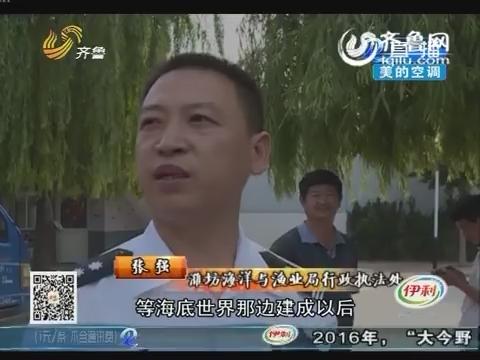 潍坊:搬家 捕捞鲟鱼有难度