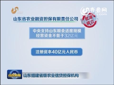 山东组建省级农业信贷担保机构