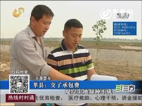 【三方帮您办】莘县:交了承包费 堤岸土地却种不成