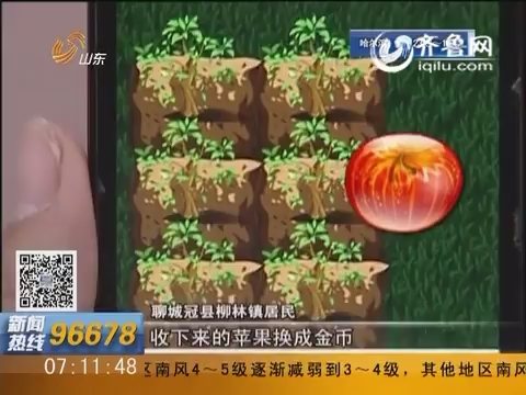 聊城冠县:农场种苹果换金币 玩游戏能赚钱?