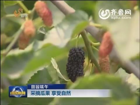 【田园端午】采摘瓜果 享受自然