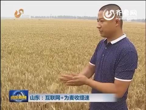 山东:互联网+为麦收提速