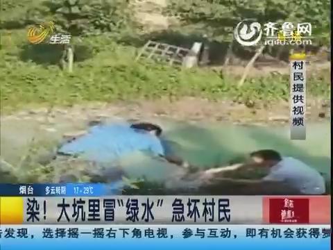 """滨州:染!大坑里冒""""绿水""""急坏村民"""