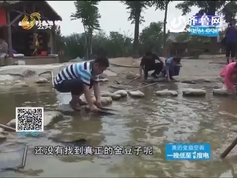 招远:游山玩水看演出 还能免费淘金