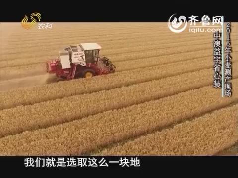 20160620《当前农事》:中澳益宇省心装