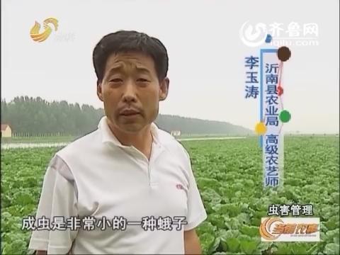 20160624《当前农事》:虫害管理