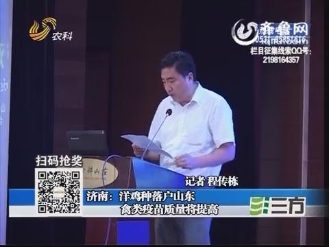 济南:洋鸡种落户山东 禽类疫苗质量将提高