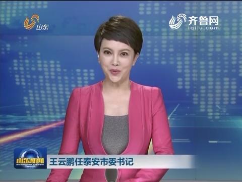 王云鹏任泰安市委书记