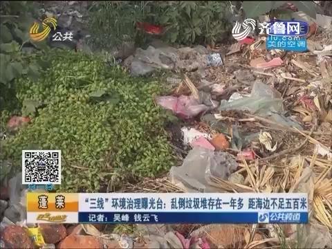 """蓬莱:""""三线""""环境治理曝光台 乱倒垃圾堆存在一年多距海边不足五百米"""