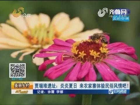 【美丽乡村】梁山 贾堌堆遗址:炎炎夏日 来农家寨体验民俗风情吧!