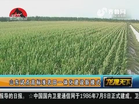 山东试点高标准农田一体化建设新模式