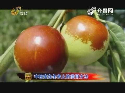 20160718《品牌农资龙虎榜》:丰田宝在冬枣上的使用办法